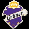 Grüner Ishockey IL