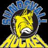 IF Sundsvall Hockey